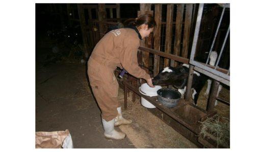 酪農後継者を目指す女性