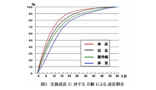 ホルスタインの成長によるバランスの変化
