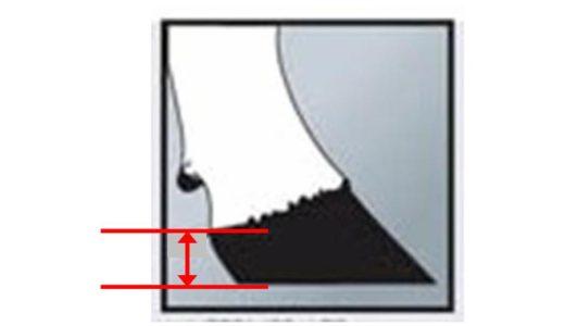 運動機能と肢の耐久性に関係する 『蹄踵(ていしょう)の厚さ』